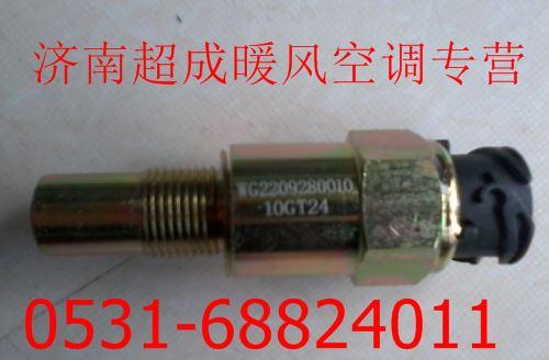 WG2209280010 重汽豪沃07款里程表传感器W高清图片
